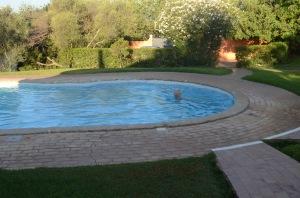 Vinni enjoying a morning swim