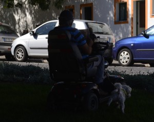 bemærk hunden der tisser mens han læser avis
